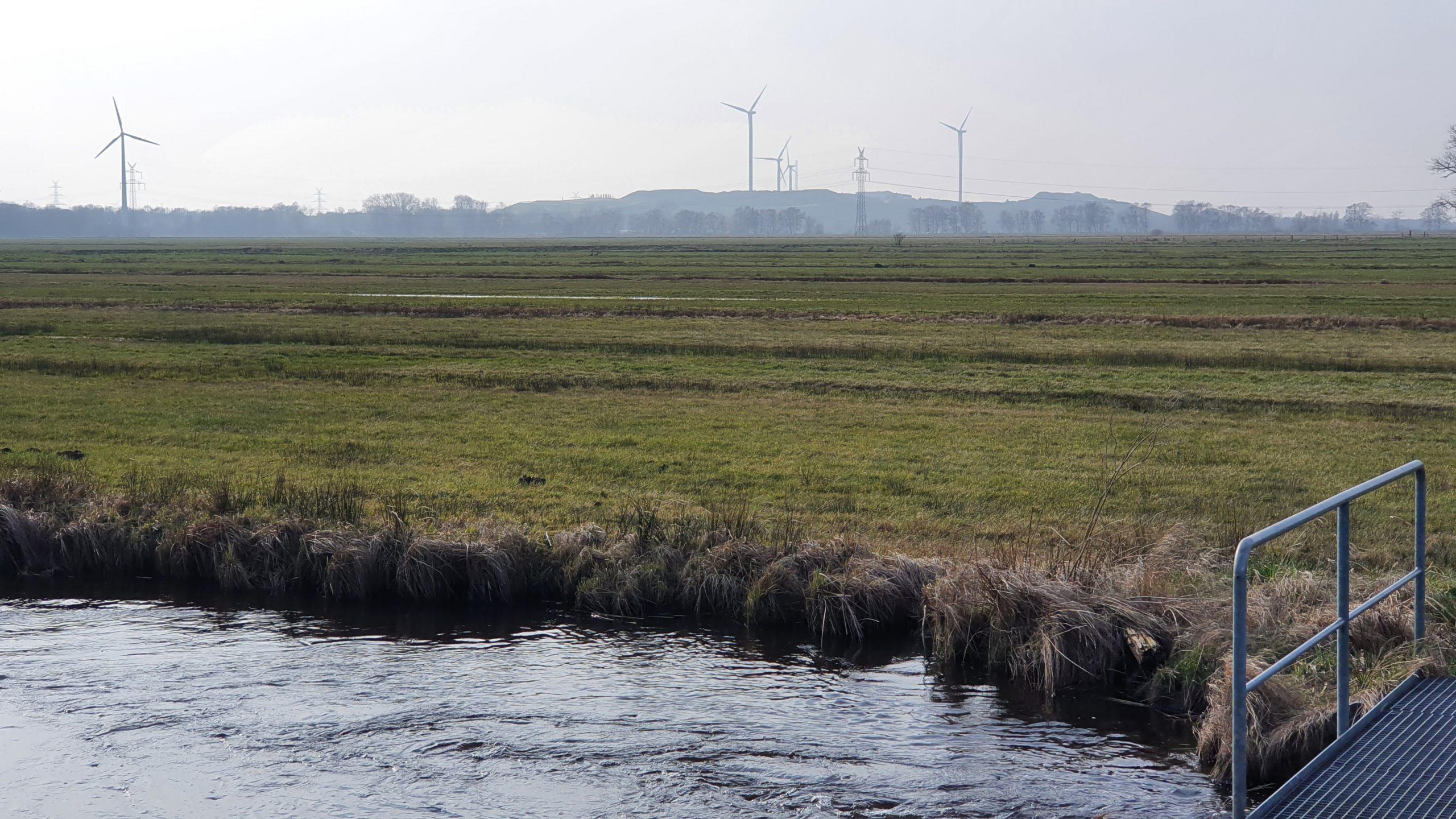 Metalhenge vom Ostrand des Kuhgrabensees gesehen